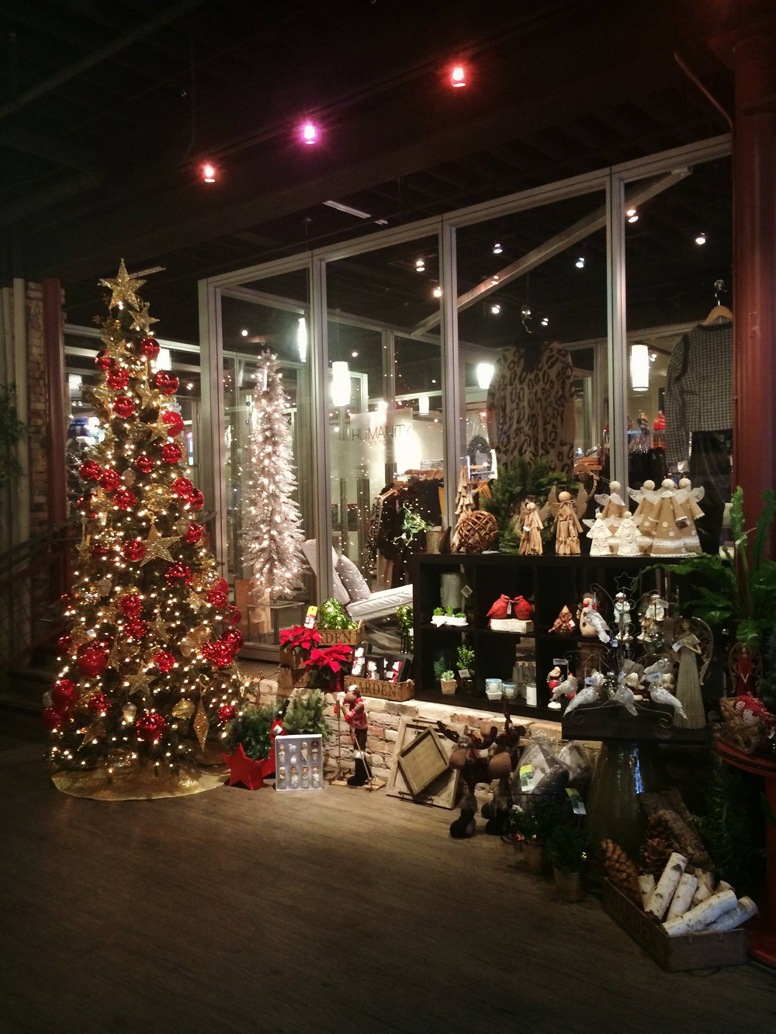 Check out MoDiv in Grand Rapids for great holiday gifts for everyone on your list.