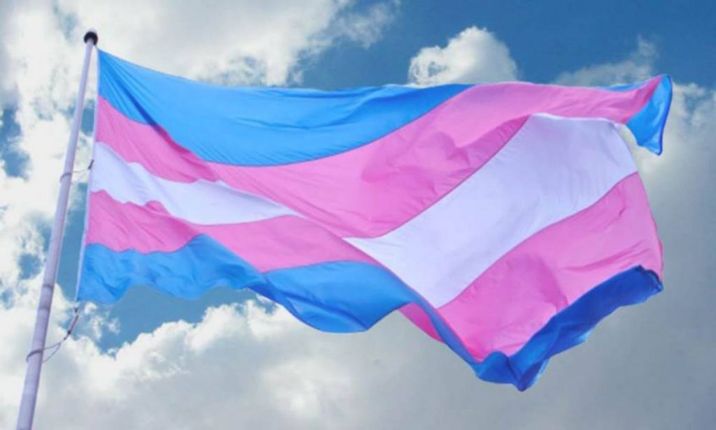 Trans Week of Visibility concludes March 31.