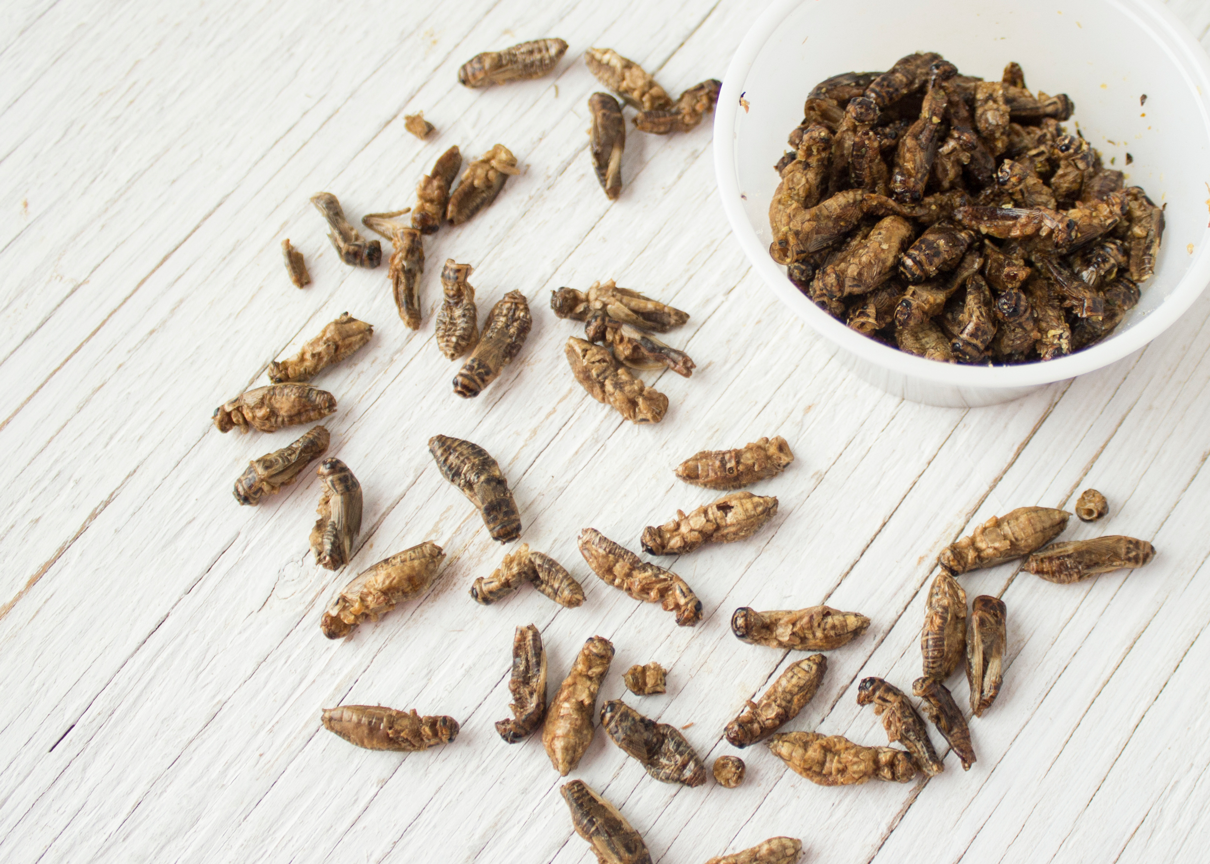 Fifth Third Ballpark introduces roasted crickets to the menu.