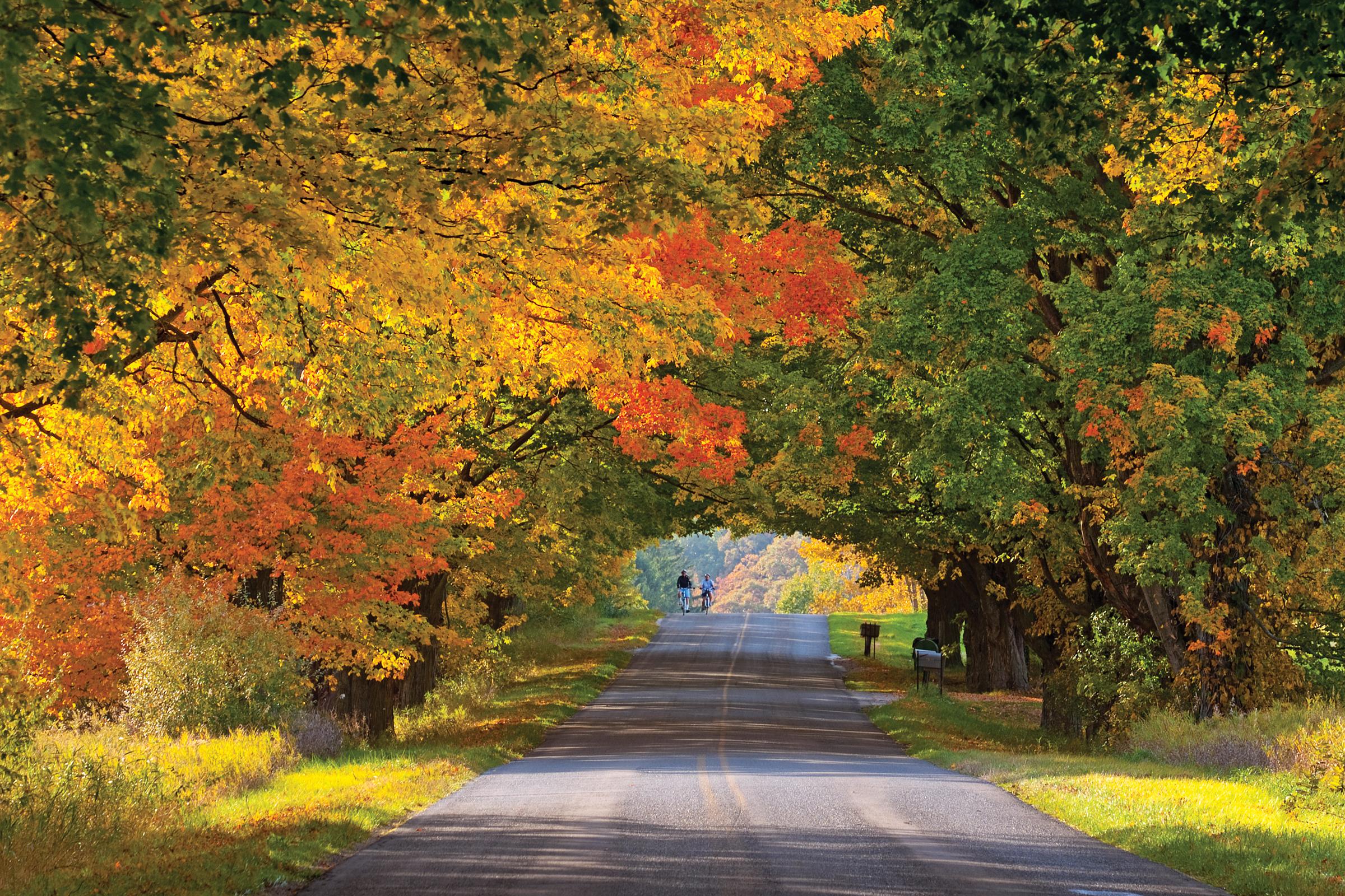 Ludington Fall Color Drive