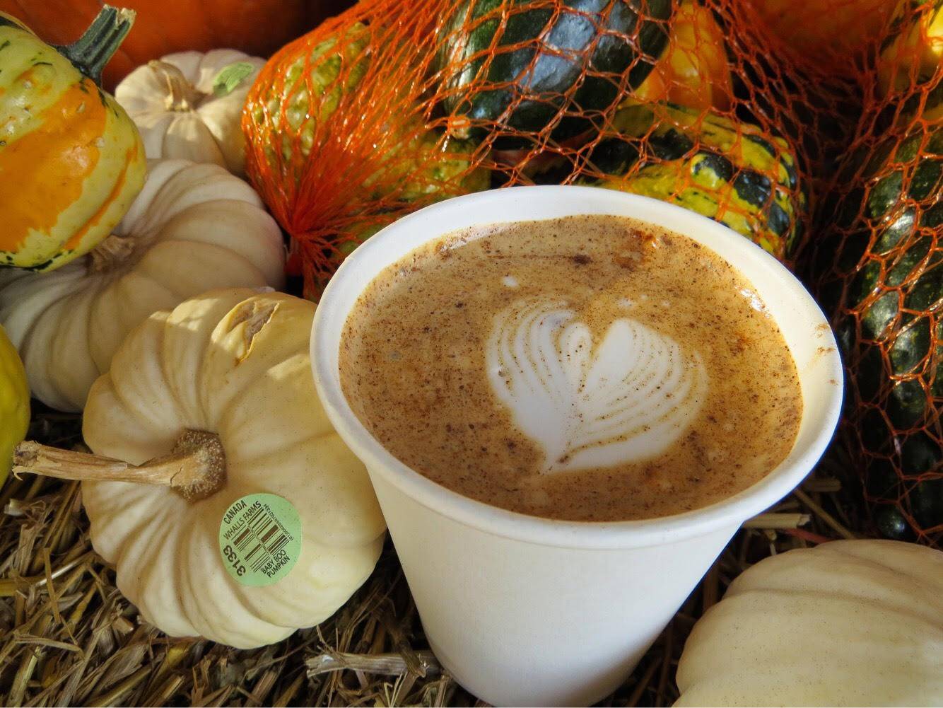 8 Lattes to Fall for this Autumn - Grand Rapids Magazine