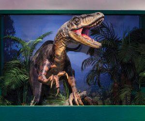 Amazing Dinosaurs Exhibit