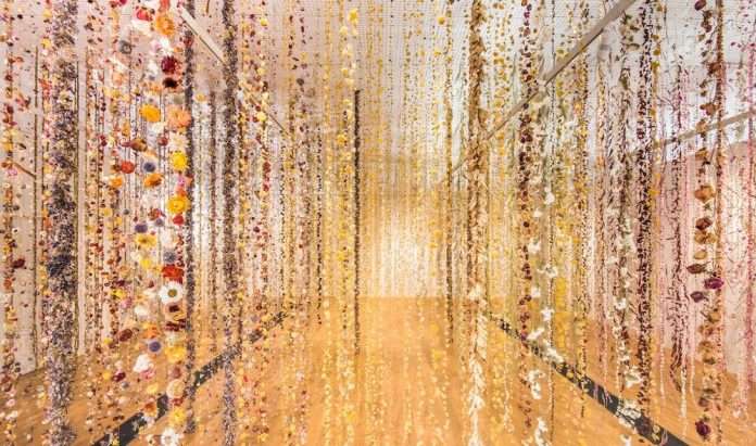 Life in Death by Rebecca Louise Law